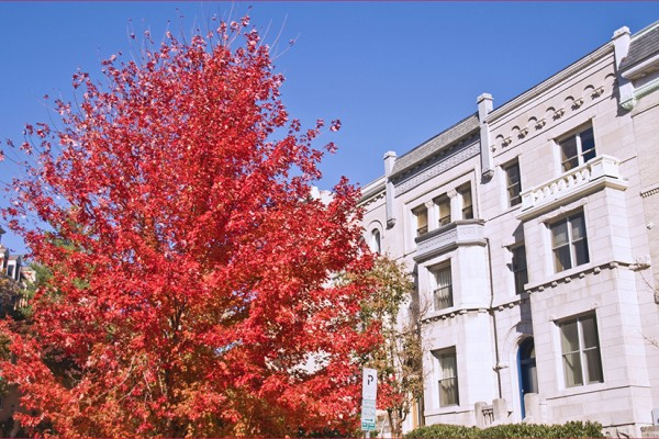 Fall in Kalorama (Photo via Flickr/Ron Cogswell)