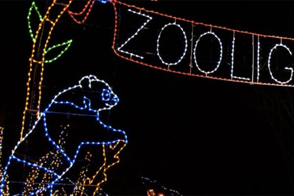 ZooLights (Photo via National Zoo)