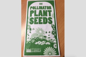 Pollinator Plant Seeds (Photo courtesy of Julia Robey Christian)