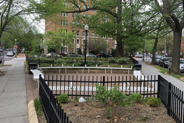 T Street park