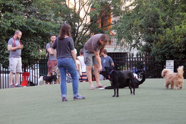 S Street Dog Park