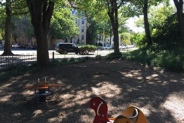 Walter Pierce Park Playground bare spot