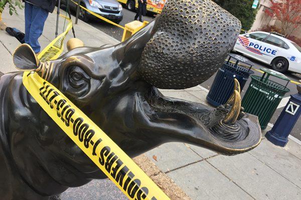 Hippo statue near GWU