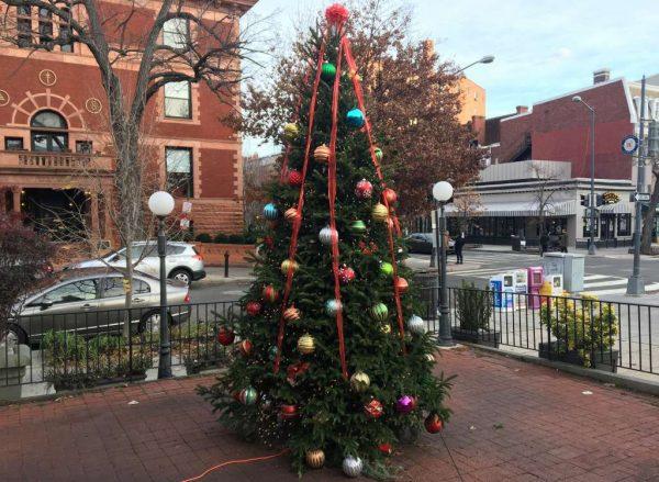 Dupont Circle Holiday Tree